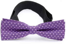 Slim Bow Tie Cotton Collection Purple Dots